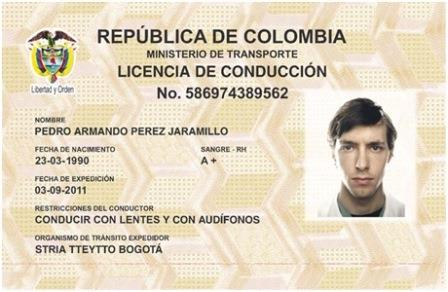 licencia conduccion 1